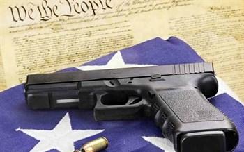 second-amendment_350x219